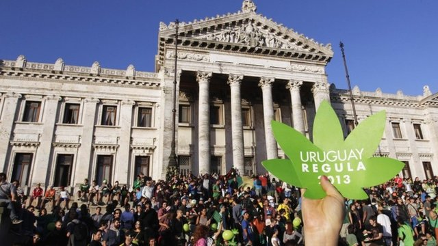 Comemoração da descriminalização da maconha no Uruguai. Foto: www.thedragon.ca